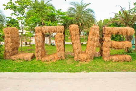 rice straw forming letter love photo
