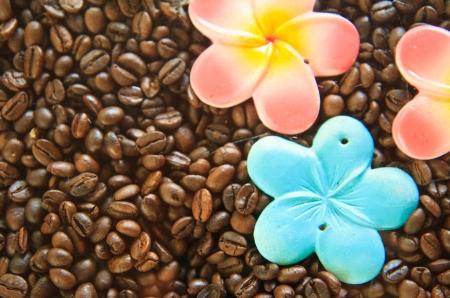 Coffee seed on table photo