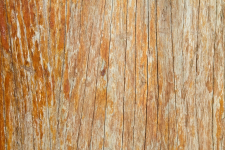 Natural wooden surface boards useful as background Stock Photo - 14785196