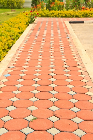 Pathway in Garden with concrete bumps photo