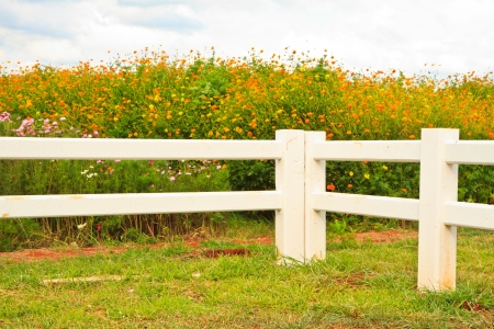 Cowboy fence on nice green meadow and flower photo