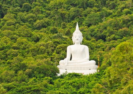 White Buddha image near mountain on trees background photo