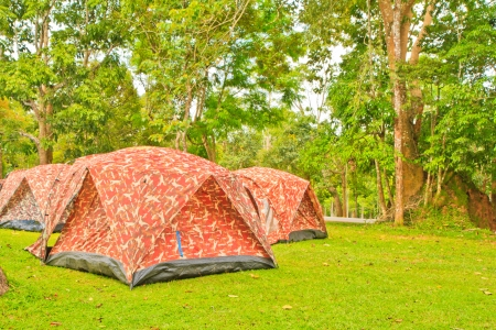 Wall Style Camping Tents at Rustic Campground during Daytime in Woods Stock Photo - 15605721