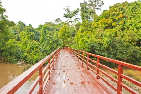 Bridge to the Haew Narok waterfall,Khao Yai national park,Thailand Stock Photo - 15605496