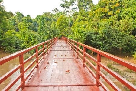 Bridge to the Haew Narok waterfall,Khao Yai national park,Thailand
