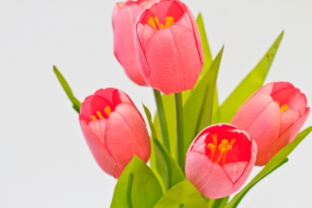 fake tulips, floral on white  background photo