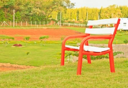 A chair on green grass  in garden photo