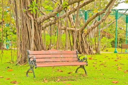 Landscaped Formal Garden  Park  At bangkok Thailand photo