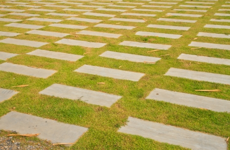 Pathway in Garden with concrete bumps and grass photo
