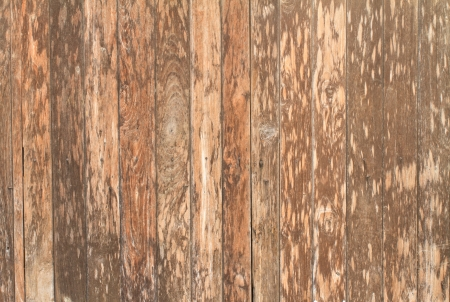 texture of old  wooden  wall, You can use background photo