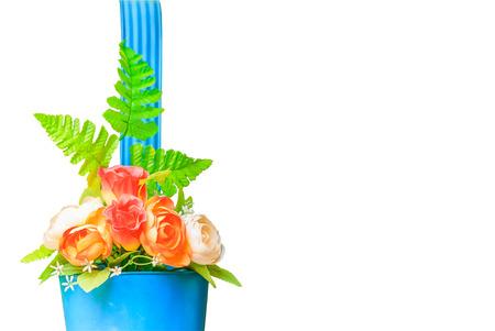 flowerpot flower. Isolated on white background