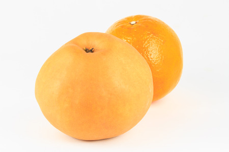 tangerine or orange and Chinese pear isolated on white background