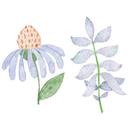手描きのパック。水彩画の花のオブジェクト