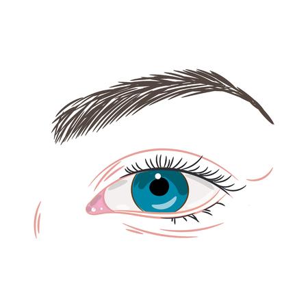 青い女性美しい目ノンメイク  イラスト・ベクター素材
