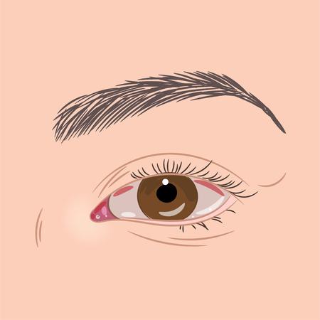 Beautiful woman brown eye closeup