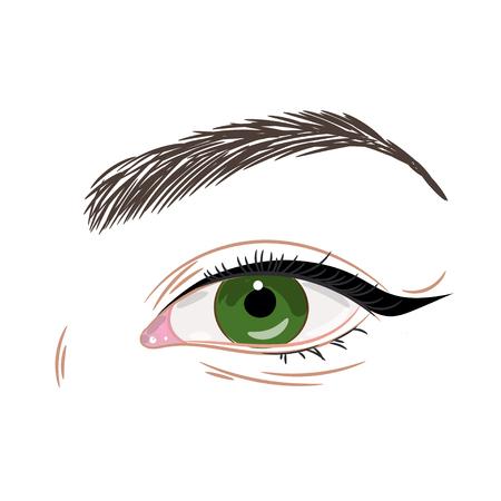黒い矢印を持つ緑の女性美しい目