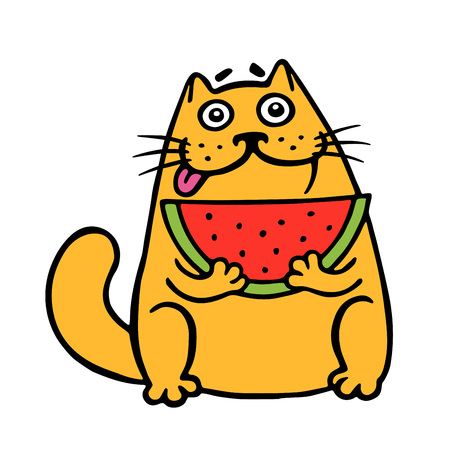 Cute fat cat eats watermelon. cat. Funny cartoon cool character. Contour freehand digital drawing. White color background. Isolated vector illustration. Illustration