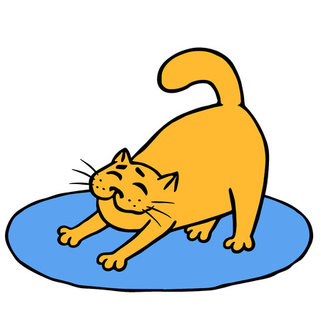 Drowsy cute orange cat does morning exercises on rug. Funny cartoon animal character.