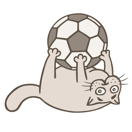 Cartoon cat soccer player caught the ball. Vector illustration. Funny animal character.