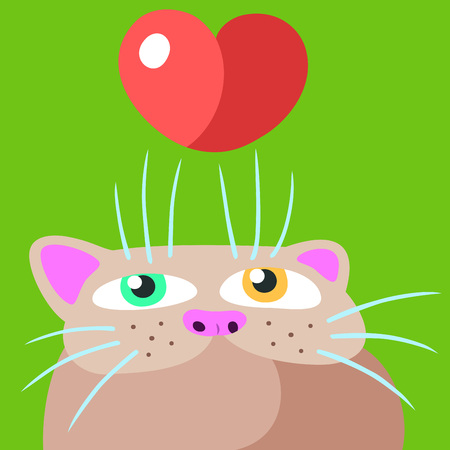 Cat in Love. Valentines Day