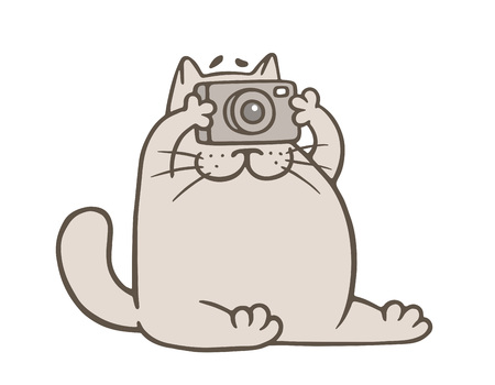 cute gray cat with camera.