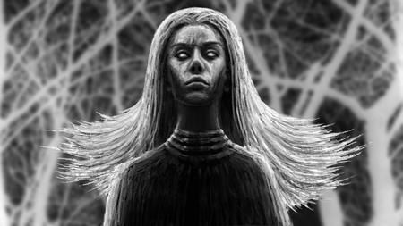 Black shaman woman. Fantasy illustration. Imagens