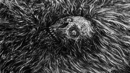 Zombiekopf im Wasser. Horror-Genre. Schwarze und weiße Farbe.