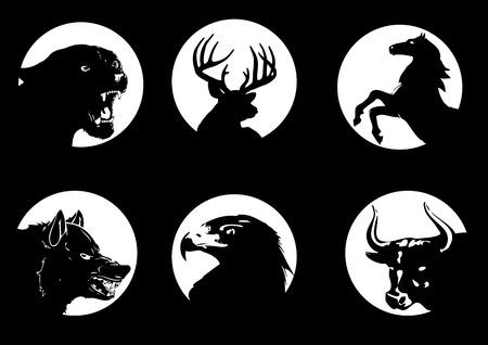 roe deer: Animal silhouettes on moonlight