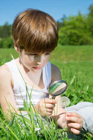 thoroughly: Cute Boy Examining Blossomed Flower Of Dandelion Thoroughly Through The Magnifying Glass While Sitting In The Grass At The Park Stock Photo
