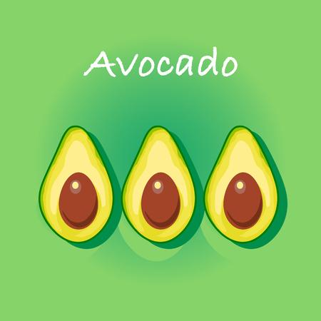 avocado: Avocado vector illustration