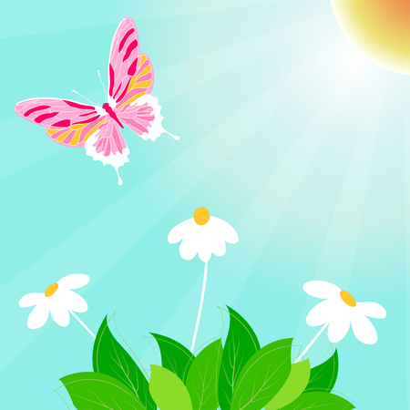 Spring time vector background with daisy, leaf and butterfly