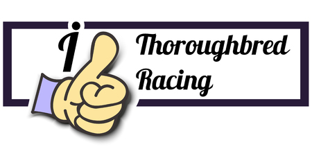 thoroughbred: Frame I Like Thoroughbred Racing Thumb Up! Vector graphic logo eps10.