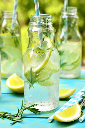 soft drinks: Citrus fizz with rosemary in a bottle. Stock Photo