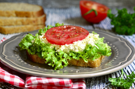 parmezan: Sandwich from whole grain bread with cheese and vegetable on rustic background.