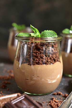 trifle: Pots with chocolate pudding,chocolate ground and plant on a dark slate,stone or concrete background- creative funny dessert.