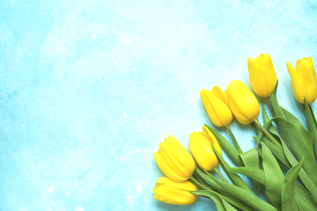 Celebrate background with bouquet of yellow tulips on a light blue slate, stone or concrete background.Top view with copy space. Stock Photo