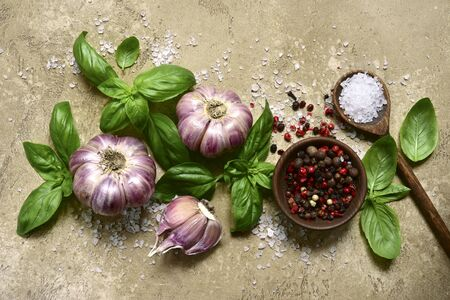 Culinary background with variety of spices : garlic, basil, pepper,salt on a light beige slate, stone or concrete table. Top view with copy space.