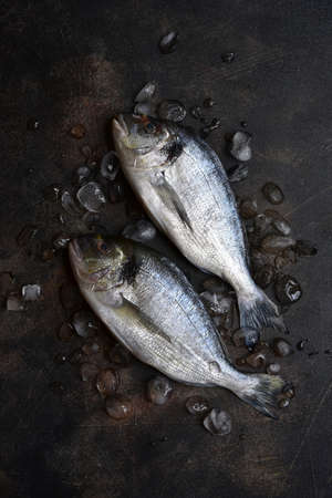 Raw chilled dorado fish on an ice cubes on a dark slate, stone or concrete background. Top view with copy space.