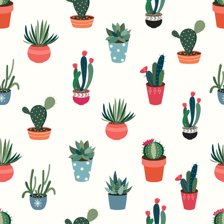 A Seamless pattern with cacti and succulents on white background