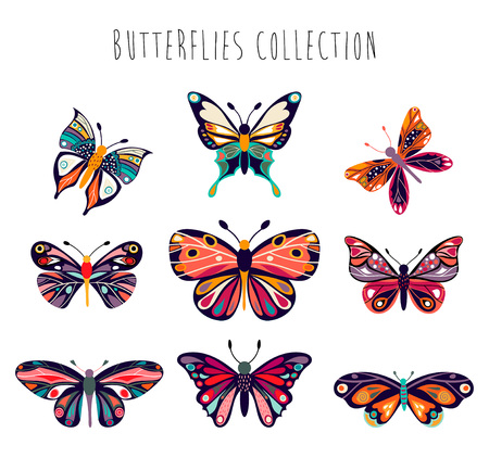 Butterflies collection with hand drawn elements isolated on white