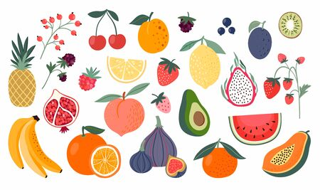 Different fruits collection, doodle style, isolated on white