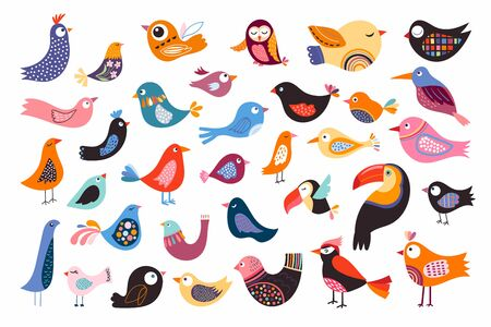 Birds collection with different abstract decorative elements, isolated on white