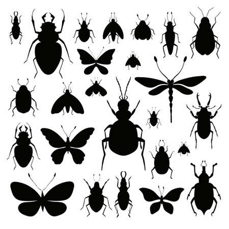 Insects silhouettes collection isolated on white background Illustration