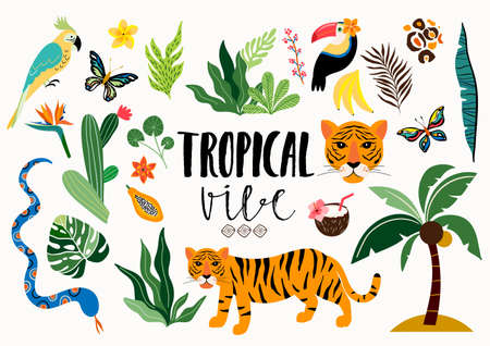 Tropical elements collection with wild animals and different items, isolated on white Illustration