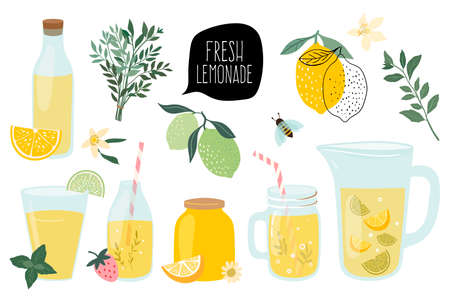 Summer fresh lemonade collection with  different elements isolated Illustration