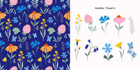 Meadow flowers set with seamless pattern and flowers collection Illustration