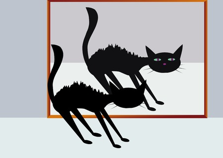 illustration of scared cat with its reflection