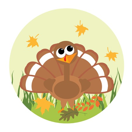 Cute little turkey looking at the leaf. Vector illustration.