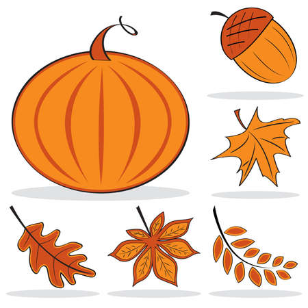 Autumnal icon set in orange color.  illustration Vector