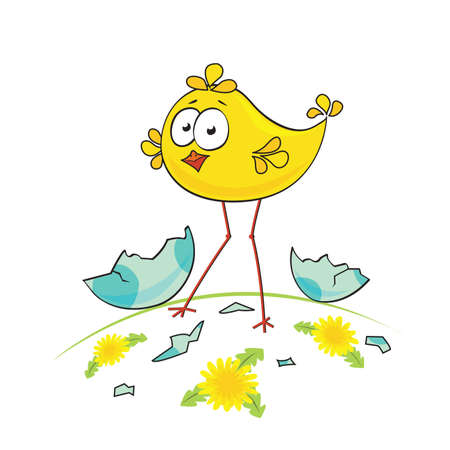 Cute little chicken on the meadow Stock Vector - 9353325